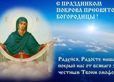 Поздравление руководителя клуба многодетных мам, протоиерея Игоря Бродяного.